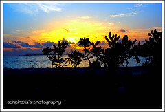 How strange is the fear of death! We are never frightened at a sunset.(in explore..) ( S H I F F ) Tags: blue trees sunset sun beach nature yellow golden evening flickr explore maldives 2009 shif colorphotoaward canon450d villingilli schiphaxa shifaza schiphaxasphotography