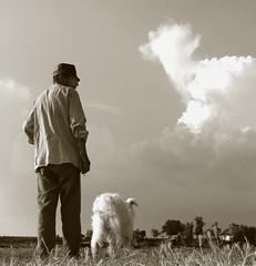 Shepherd No.21 /or/ Backing No.2 (Dushan B. Hadnadjev [slowly back]) Tags: life light portrait sky people dog house man art love village sheep time shepherd serbia soul dreams balkans magical oldfarm twop srbija dushan