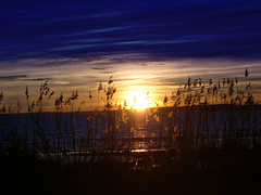 Blue sky (CH flickrphotos) Tags: sunset sun beach moss straw bluesky stfold alby jelya platinumheartaward vftw dullskiesblue