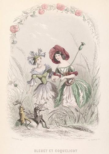 Bleuet et Coquelicot - Les Fleurs Animées - JJ Grandville