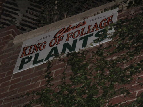 Chris King of Foliage