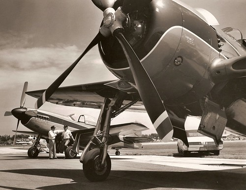 Warbird picture - F8F and P-51