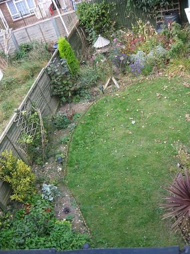 upper lawn 10/2009