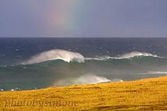 Maui, Hawaii (simone reddingius) Tags: ocean sunset hawaii rainbow waves wave maui pasture northshore photobysimone