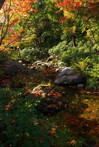 せせらぎ / murmur of a brook