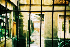 Something imprisoned my hart (C.L.I.W) Tags: windows film xpro dof bokeh crossprocess free lomolca prison hart penetration e2c imprisoned  kodakeb100