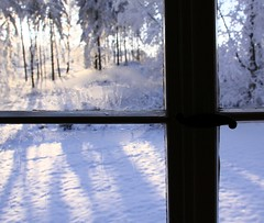 (Linda6769 (hiking)) Tags: winter mountain snow tree window museum germany town thringen hoarfrost thuringia fir inside conifer ilmenau huntinglodge kickelhahn jagdhaus jagdhausgabelbach