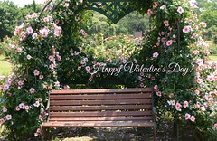 Happy Valentine's Day !♥ (snowshoe hare*) Tags: rosegarden botanicalgarden rose bench flower flowers バラ valentinesday 海の中道海浜公園 dsc1058 バラ園