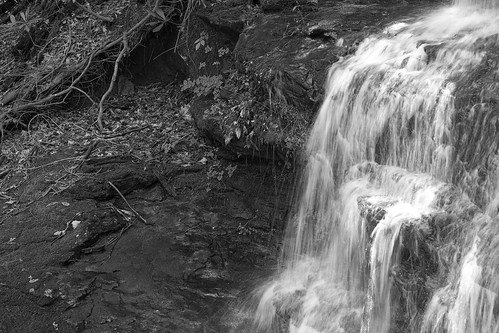 water fall frozen with moss bw