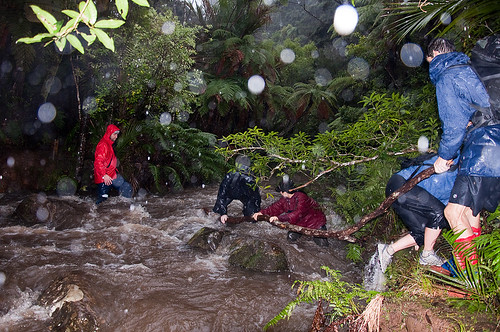 Crossing a stream in Waitakere Ranges - Auckland, NZ