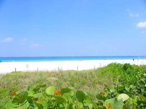6.22.2009 Miami, Florida (140)