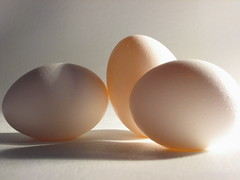 iodine rich food 5 - eggs