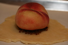 Donut or Saturn Peach Galette - Food Librarian