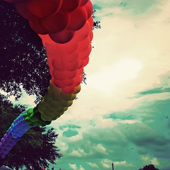 178:365 - balloons (cavale) Tags: blue red sky 3 green bird yellow vintage balloons rainbow arch purple tampabay edited saintpetersburg portfolio gaypridefestival project365 epiceditsselection wordnikballoons cavalephotonet