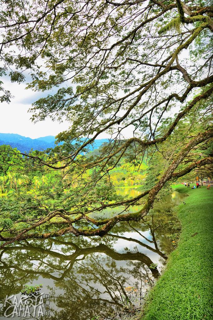 Taiping Lake02