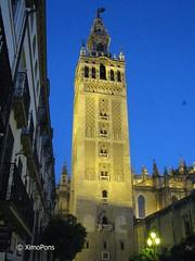 La Giralda    094 (XimoPons : vistas 4.500.000 views) Tags: españa architecture sevilla spain cathedral catedral andalucia iglesias giralda catedraldesevilla ph227 spein ximopons