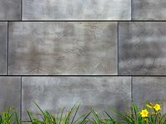 Iron Flower (Tailer Ransom) Tags: flower college canon eos rebel nikon iron 7d minimalism bowdoin ransom xsi williamscollege lockwood tailer tailerransom