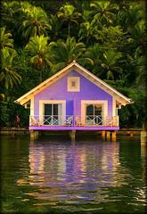 Banana's Resort (Seracat) Tags: sea mer tree hotel mar sony central palm resort bananas cabana caribbean portobelo carib palmera panam hdr platja caribe coln islagrande sonya100 amrica seracat