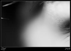 Un Hilo... (z-nub) Tags: portrait people blackandwhite bw woman macro blancoynegro digital zoe mujer eyes pentax retrato bn minimal personas ojos oo minimalista miradas mnimo znub zoelv pentaxk10d vscerasyotrasmetforas bnysimilares personasquenosondelacalle zoelpez sinacento