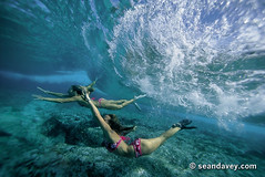 An under water view of a two girls swimming under a wave, that's roling across the reef at Off The Wall, on the north shore of Oahu, Hawaii. (Sean Davey Photography) Tags: pictures usa seascape color green nature horizontal glitter photography hawaii