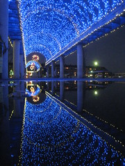 Doubled (historygradguy (jobhunting)) Tags: blue reflection water boston night ma puddle lights massachusetts newengland arbor hero mass bostonist bigmomma challengeyouwinner thumbsupwinner christophercolumbspark
