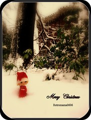Marry Christmas for everybody !!!!
