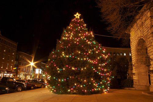 Christmas tree in Concord, NH