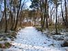 Il sentiero fatto di neve
