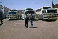 Greyhound Buses 1963 (mybelair62) Tags: greyhound bus 1963 scenicruiser