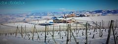 CASTELLO LA VOLTA- BAROLO (teatodorova) Tags: castello barolo poesaggio vini vigna colline langhe unesco snow castle bianco blue