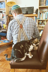 Sharing (giltay) Tags: nick katie cat man suspenders braces yarmulke kippah chair apartment bookshelves home