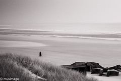 solitary collapse (musimage) Tags: escape beach bnw dune fuite solitude solitary collapse