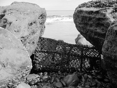 bw crab net (Paul Adames Noble) Tags: uk sea blackandwhite beach monochrome stones windswept southofengland fisher eastsussex weatherd canona400