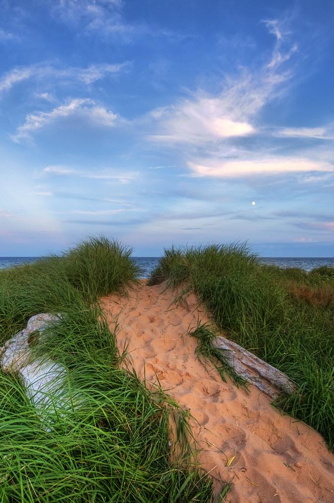 Chemin sur la plage