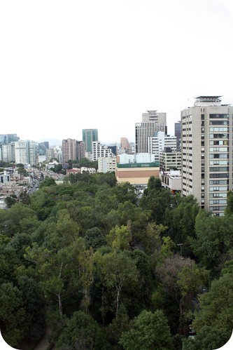 view from my window, Mexico City by you.