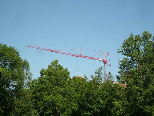 Carleton Crane