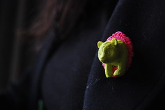 So heres a piece of advice... (claudiacrayon) Tags: bear pink black cute green girl panda brooch move nikond40