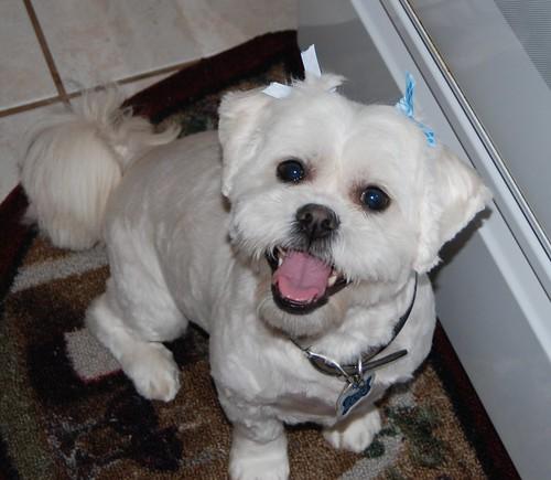 08-31-09 Smiley Dory