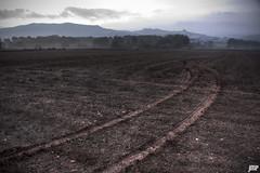 Banyeres de Mariola (Jaio.Musika.Hil) Tags: maana rboles pueblo arena alicante amanecer niebla barro hierba banyeresdemariola
