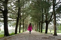 walking (esther**) Tags: road pink autumn trees winter portrait sky woman mountain green nature grass forest hair way walking path walk greece rhodes interestingness174 interestingness82