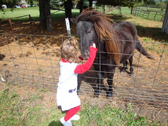 Lilliann Hugging A Horse
