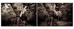 Wonderland : Far Far Away (full diptych) (Kirsty Mitchell) Tags: girl beauty fairytale flying diptych katie magic surrey fantasy wonderland storybook aerialhoop kirstymitchell elbievaneeden thiswassoincredibletowatch