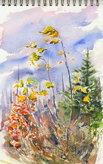 Halloween Plein Air 2009 (Artist Naturalist-Mike Sherman) Tags: autumn trees art fall halloween rural watercolor painting michigan lansing foliage transparent 2009 barebranches pleinair october31