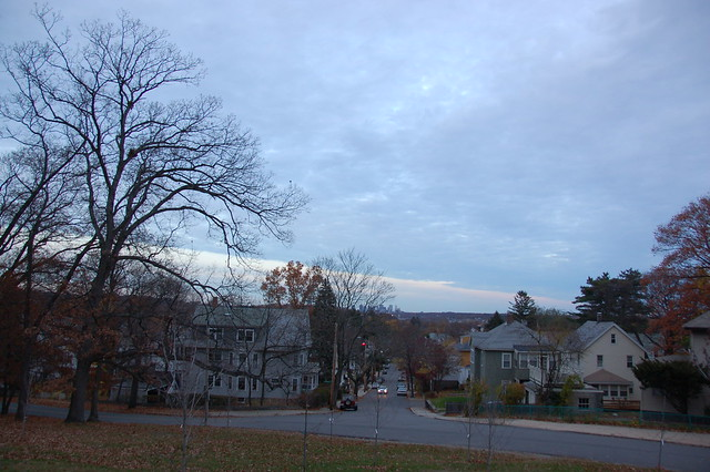 View of Boston skyline from side of Bellevue Hill West Roxbury  Boston MA by Chris Devers
