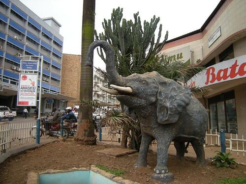 Elefante no centro de Kampala by Leandro