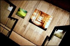 arte della fotografia (mario bellavite) Tags: mostra arte verona fotografia verone scavi alinari scaligeri mariobellavite bestverona