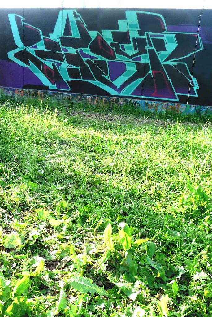 zeus40-2009'-(5)