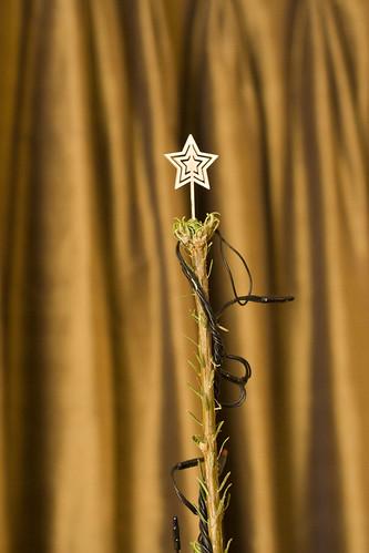 CNC Christmas Star