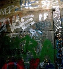 inside the 1913 LA ZOO (joycehillstudio) Tags: travel winter streetart art collage watercolor painting graffiti photo buffalo aluminum artist acrylic photos mixedmedia events hill spray next canvas announcement textures joyce works series wax around spattering transfers spraypaints phototransfer joycehill