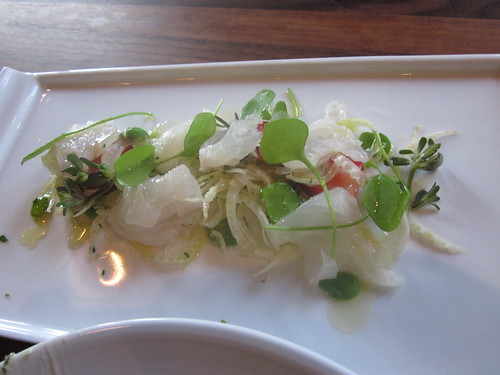 Flour + Water - San Francisco - May 2011 - Halibut Crudo with Strawberries, Favas, and Fennel Blossoms